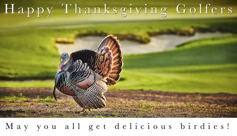 Happy Thanksgiving - Tasty Birdies
